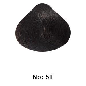 ing 5T