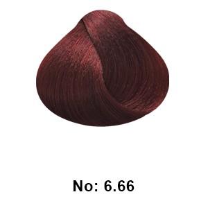 ing 6.66